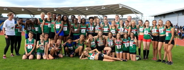 YDL champs